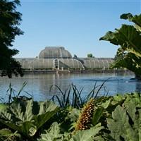 Kew Gardens & Palace