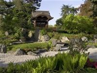 Royal Botanic Gardens Kew Japanese Festival