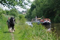 Horse Drawn Boat Trip & Marlborough